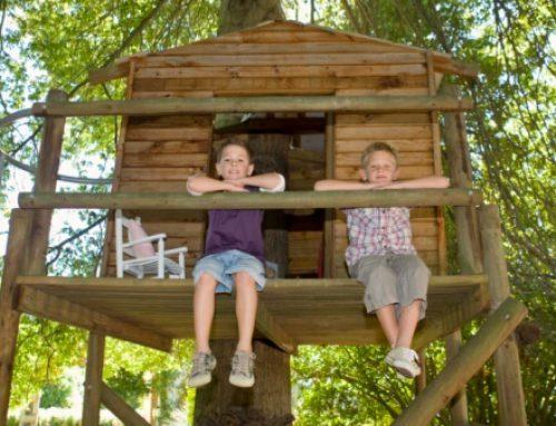 La casa nido en la custodia compartida